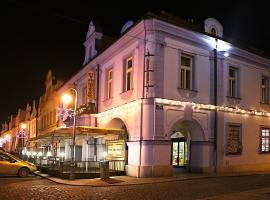 Hotel Zlatá Včela, hotel in Domažlice