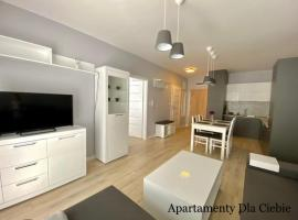 Style Apartment, apartment in Gniezno