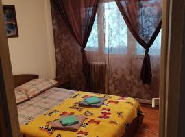 APARTAMENT IN REGIM HOTELIER, apartment in Băile Herculane