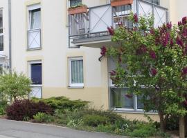 Spitzen-Ferienwohnung in der Spitzenstadt Plauen, budget hotel in Plauen