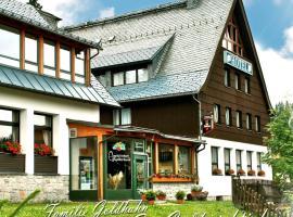 Ferienhotel Mühlleithen, hotel in Klingenthal