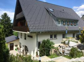 Hotel-Pension Windgfäll, Hotel in Feldberg (Schwarzwald)