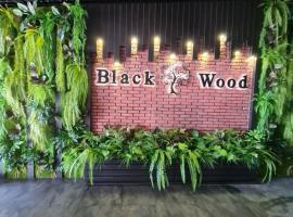 Black Wood, pet-friendly hotel in Gelendzhik
