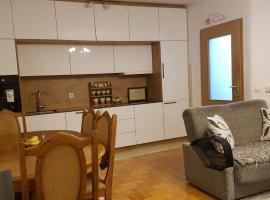 Redon Apartment, apartment in Pristina