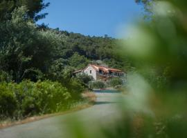 Olive Hill Family House, villa in Vis