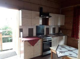 Apartament u Agnieszki, apartment in Murzasichle