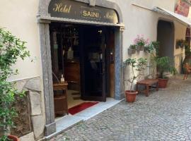 Hotel Saini, hotel in Stresa