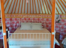 Yurt camping, pet-friendly hotel in Slyudyanka