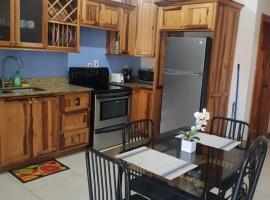 Elmonte Apartment, apartment in Kingston