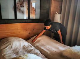 Hotel Les Mélèzes, hôtel à Les Deux Alpes