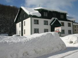 Penzion Lázeňská, hotel a Svoboda nad Úpou