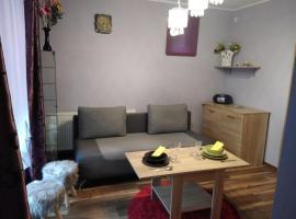 Apartament Mieszkanie Gniezno-na doby 120zl, apartment in Gniezno