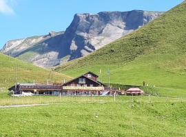 ALP Klewenalp Ausflugs-Ski-Pistenhotel Klewenstock, hotel in Beckenried