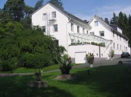Hotel Ambiente, hotel near Festhalle Plauen, Hof