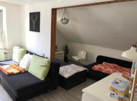 Ferienwohnung im Einfamilienhaus, Volkswagen und Robert Schumann Stadt Zwickau, Hotel in Zwickau