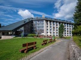 Wellness Hotel Svornost – hotel w mieście Harrachov