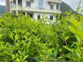Hotel Divine Palace Pushkar, budget hotel in Pushkar