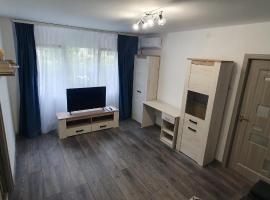 3 rooms apartment Airy & Bright, apartment in Iaşi