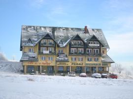 Ośrodek Pegaz, hotel near T-bar ski lift Mieszko, Duszniki Zdrój