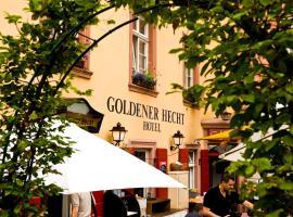 Hotel Goldener Hecht, hotel in Heidelberg