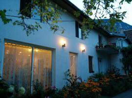 Pension Casa Anadam, guest house in Băile Herculane