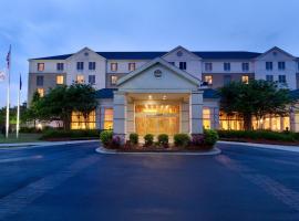 Hilton Garden Inn Atlanta East/Stonecrest, hotel near The Mall at Stonecrest, Lithonia