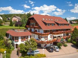 Schreyers Hotel Restaurant Mutzel, отель в городе Шлухзе