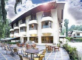 Vikram Vintage Inn, hotel in Nainital