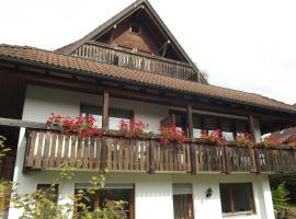 Pension Bergseeblick, hotel in Titisee-Neustadt