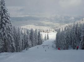 Ski & Holiday Apartments in Pamporovo, apartment in Pamporovo