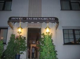 Airport-Hotel zum Taubengrund, hotel near Frankfurt Airport - FRA, Kelsterbach