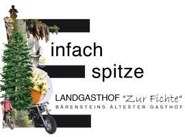 Landgasthof Zur Fichte, hotel in Bärenstein