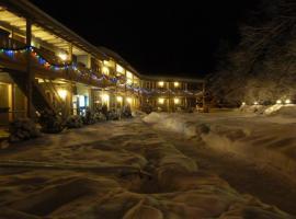 Viking Motel, motel in Wilmington