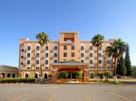 iStay Hotel Ciudad Victoria, hotel en Ciudad Victoria