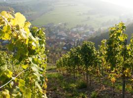 Weingut Hees - Landgasthof Zum Jäger aus Kurpfalz, хотел в Auen