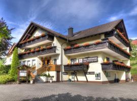 Zum Wiesengrund, Hotel in Heimbuchenthal