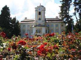 Schlosshotel Rosenau Superior, Hotel in Schloss Rosenau