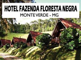 Hotel Fazenda Floresta Negra, hotel em Monte Verde