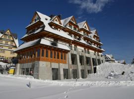 Hotel Zbójnicówka, hotel near Grapa Litwinka 1 Ski Lift, Bukowina Tatrzańska