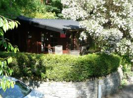 Whinfell Tarn Luxury Log Cabin, pet-friendly hotel in Ambleside