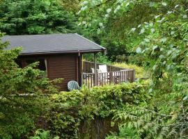 Mockerkin Tarn Luxury Log Cabin, pet-friendly hotel in Ambleside