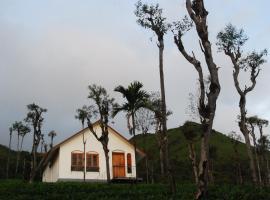 Tea Terrace Vythiri, hotel in Vythiri