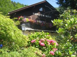 Pension Wolf, Pension in Steindorf am Ossiacher See