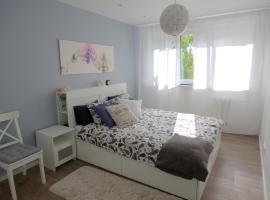 Cosy Holiday Apartment, apartamentai mieste Druskininkai