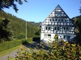 Haus Höhenflug, hotel in Schmallenberg