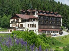 Hotel Zieleniec, hotel near the Holy Virgin Mary's Assumption church, Zieleniec
