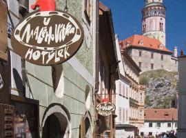 Hotel U Malého Vitka, hotel v destinaci Český Krumlov