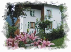 Villa Aprica Appartamenti, apartment in Molveno