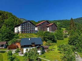 Alpenhotel Dachstein, hotel in Bad Goisern