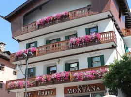Hotel Montana- ricarica auto elettriche, hotel in Cortina d'Ampezzo